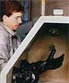 Cabinet gloves.