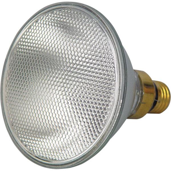 Floodlight Bulb
