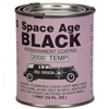 Bill Hirsch Spage Age Black, pint can