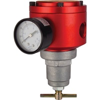 "RTI 1/2"" NPT Industrial Air Regulator"