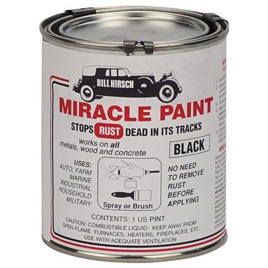 Bill Hirsch Miracle Paint - Gloss Black, Pint