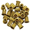 "1/4""-20 Zinc-Plated Steel Rivet Nuts - 25Pk"
